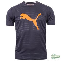 Ảnh số 32: Puma Evo power t-shirt - Giá: 450.000