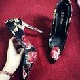 Chuyên bán buôn, bán lẻ giày cao gót các lọai HOT HIT 2014