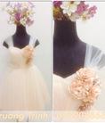 Hàng thiết kế cao cấp. Đầm cưới, dạ hội, dự tiệc.... 2015