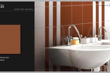 Gạch ốp tường 20x25 American Home OHIO 003   WDD20